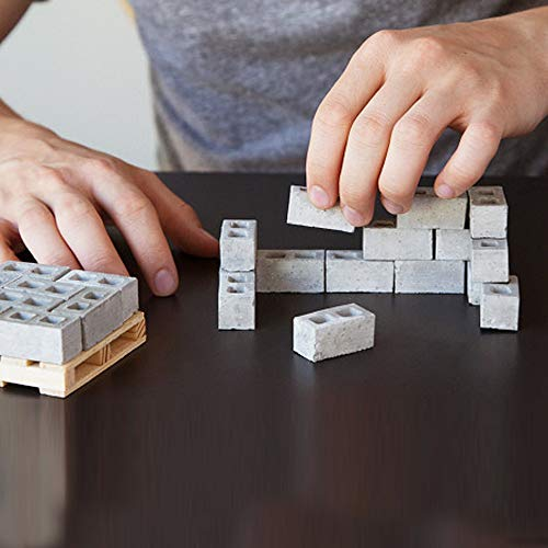 Huaze 2pcs Mini Cement Bricks and Mortar - red Bricks are 1:6 Scale Miniature Cinder Blocks - Let You Build Your Own Tiny Wall Mini (Gray)