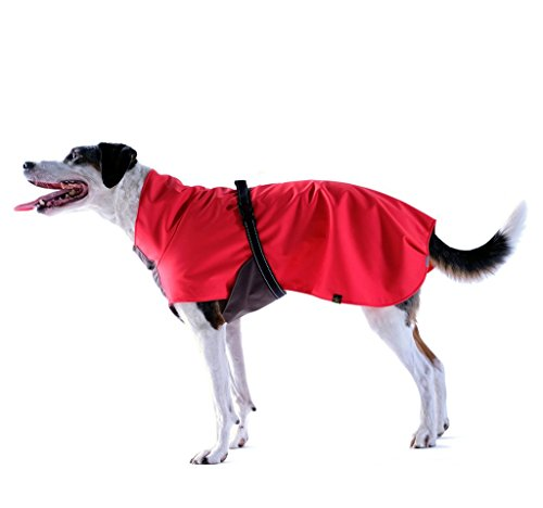 Rain Paw Waterproof All-Season Dog Coat - Red Size 20/24