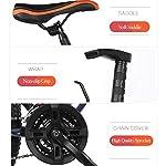 PXQ-Mountain-Bike-in-Carbonio-Duro-20222426-per-Adulti-Shimano-21-velocit-con-Freni-a-Disco-Doppi-e-Forcella-Ammortizzata-Red-26Inch