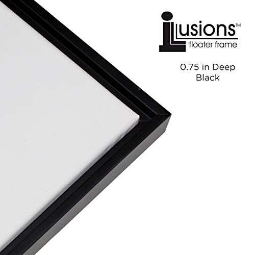 Creative Mark Illusions Floater Frame for 3/4 Inch Depth Stretched Canvas Paintings & Artwork - [Black and Black - 16x20]