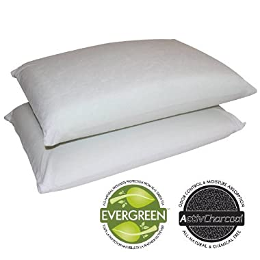 Sleep Master Memory Foam Traditional Pillows- set of 2, Standard