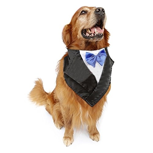 PetFavorites Large Dog Tuxedo Costume - Cat Wedding Bandana Collar with Bow Tie for Halloween - Golden Retriever Sheepdog Clothes Outfits Accessories, Adjustable and Handmade (Blue, 22.5 to -