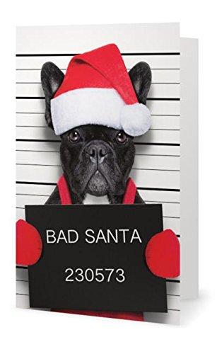 Bulldog Depot Holiday Collection-
