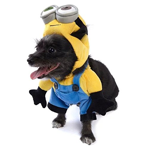 Minion Costume Dog (Rubies Halloween Minion Bob Dog Costume -)