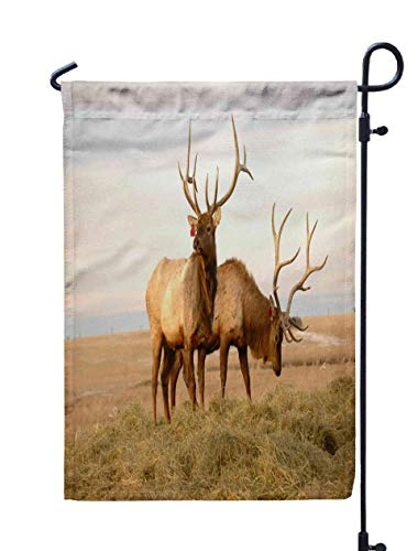 Shorping Welcome Garden Flag, 12x18Inch Two Elk for