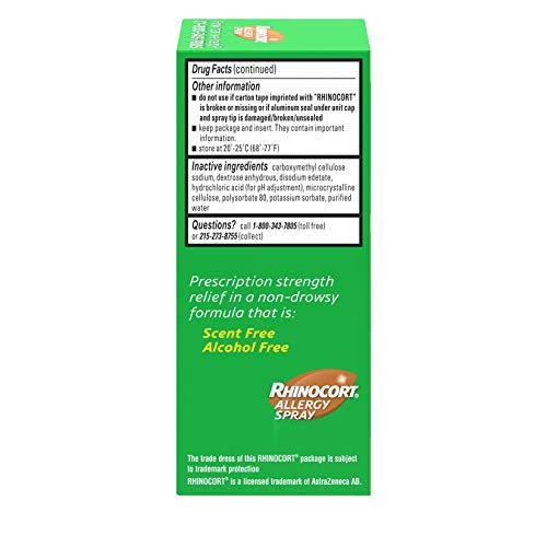 Rhinocort Allergy Spray, 120 Spray