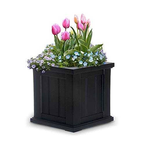 Square Pot Planter - Mayne 4836B Cape Cod Planter, Black, 14 -Inch