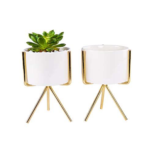 Ceramic Succulent Pots with Golden Iron Rack Stand, Set of 2 White Cactus Pots, Modern Flower Planter with Drainage, Decoration for Desks/Bookshelves / Window Sills/Living Room (E)