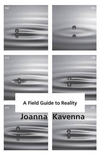 Image result for joanna kavenna field guide