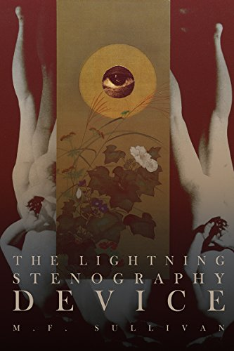 Perfect for fans of Philip K. Dick's VALIS Trilogy! M. F. Sullivan's subversive blend of science fiction and fantasy is today's must-read Kindle title: The Lightning Stenography Device