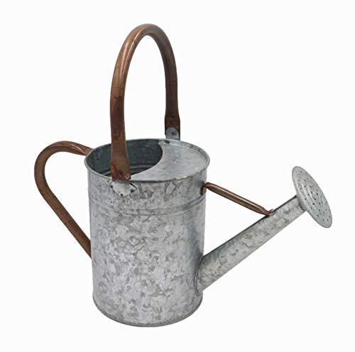 Tryer Vintage Farmhouse Watering Can (Galvanized Iron with Rusty Zinc Handles) ()