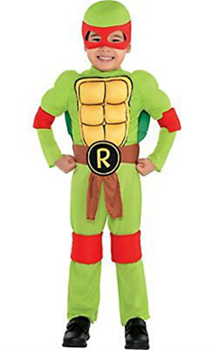 Teenage Mutant Ninja Turtles Raphael Costume Toddler