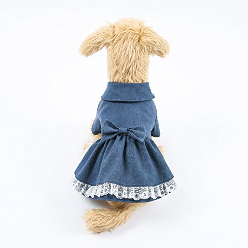 Sweet Pet Denim Skirt Cute Dog Costumes Spring Jean Lace Dress for Dogs (M)