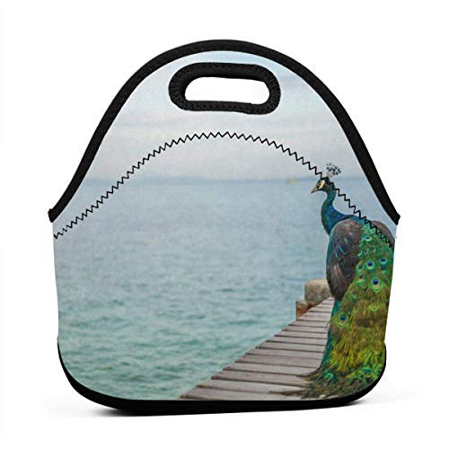 ote Peacock In Seacoast Neoprene Lunch Handbag Food Zipper Storage Lunch Box For Men Women Kids ()