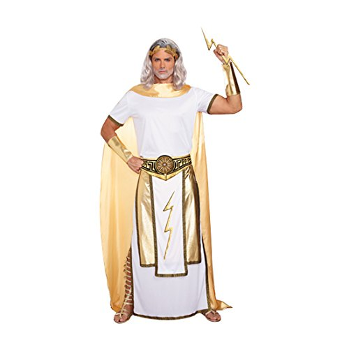 Dreamgirl Men's Zeus Costume, White/Gold, (Greece Costumes For Girls)