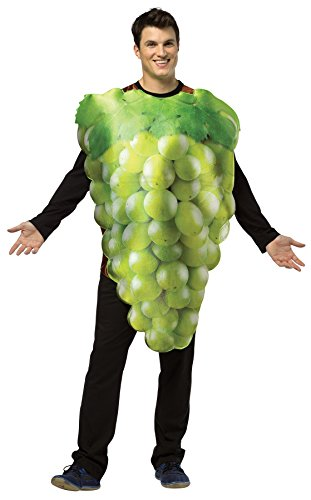 Grapes Halloween Costume Of Bunch (UHC Men's Get Real Bunch Of Grapes Snack Food Theme Adult Halloween Costume,)