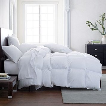 THE ULTIMATE WINTER COMFORTER DEAL Hotel Luxury Down Alternative Comforter Duvet Insert with Tabs Washable and Hypoallergenic (Queen) (Warm Comforter)