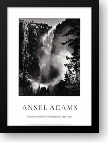BridalVeil Falls 28x40 Framed Art Print by Adams, Ansel