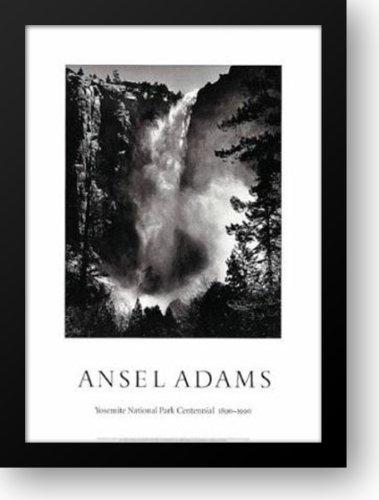 (BridalVeil Falls 28x40 Framed Art Print by Adams, Ansel)