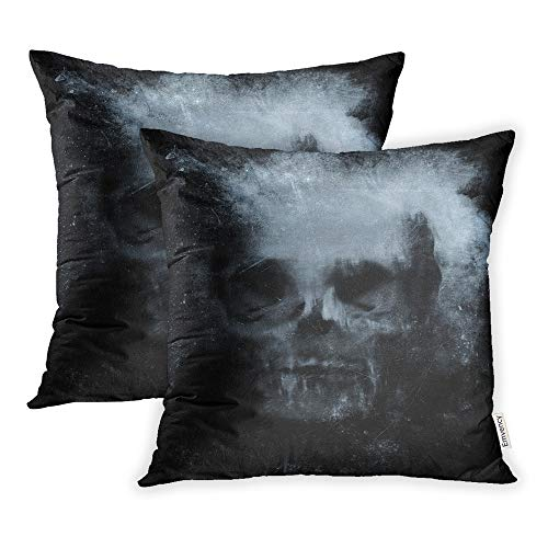 Emvency Pack of 2 Throw Pillow Covers Print