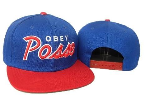 Obey Gorra Azul/Rojo Posse: Amazon.es: Deportes y aire libre