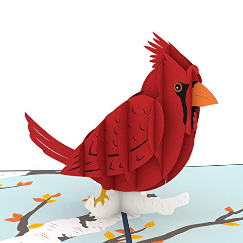 Lovepop Cardinal Pop Up Card, 3D Card, Birthday Card, Sympathy Card, Animal Card, Bird Card