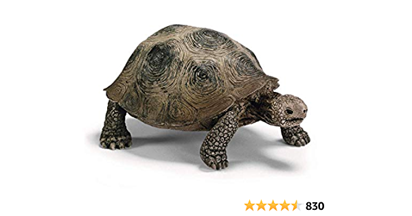 /</>/<Tortoise home turtle home  realistic 42506  Schleich Anywheres a Playground