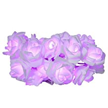 LightMe Romantic 24 LEDs Emulational Rose LED String Lights Flower Decorative Lamps(Purple)