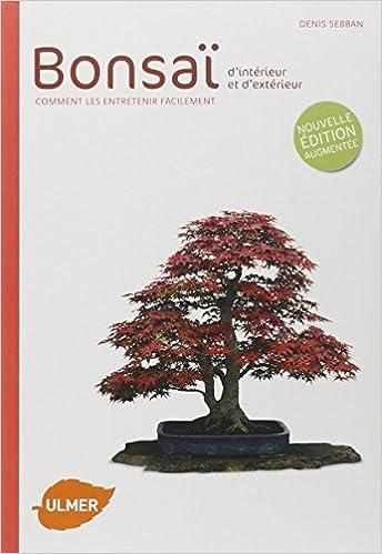 amazonfr bonsa dintrieur et dextrieur ne denis sebban livres