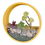 JUYOU Round Glass Wall Vases Planter, Wall Mount Holder DIY Display Vase for Garden Indoor Outdoor Decor Hanging Succulent Plants,Small Cactus, 10' H, Yellow