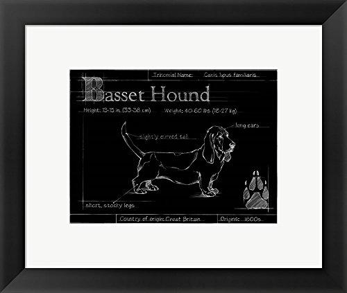 Great Art Now Blueprint Bassett Hound by Ethan Harper Framed Art Print Wall Picture, Black Frame, 17 x 15 (Basset Hound Photo Frame)