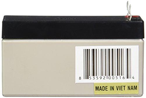 High Tech Pet Battery B12V 1 3