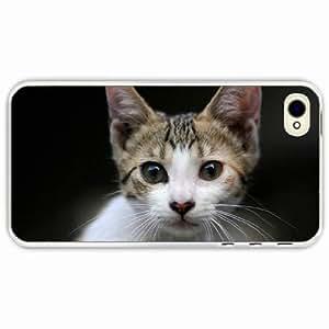 iPhone 4 4S Black Hardshell Case kitten eyes surprise Transparent Desin Images Protector Back Cover