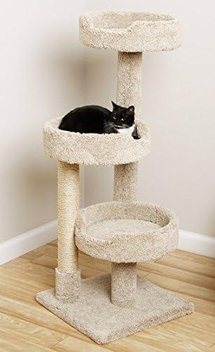 Amazon.com: Ventana Tamaño Árbol de Kitty Cat Torre con 3 ...