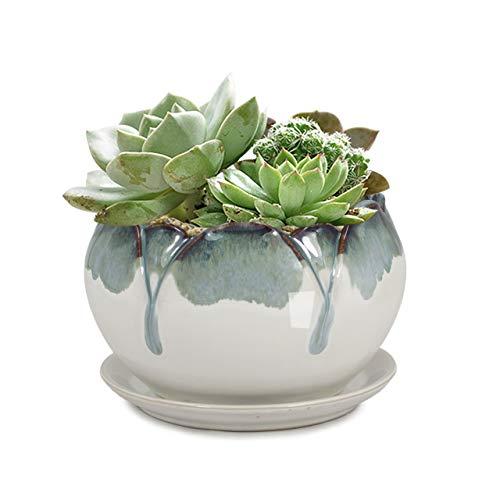 Dahlia 5.5'' Inch Rustic Drip Glazed Ceramic Planter/Succulent Pot/Plant Pot w. Saucer/Tray, White