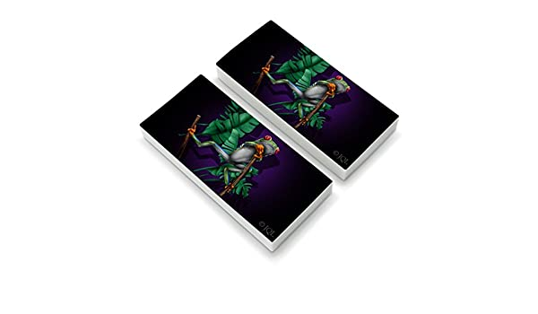Amazon.com: South American Tree Frog Hanging Out Eraser Set ...