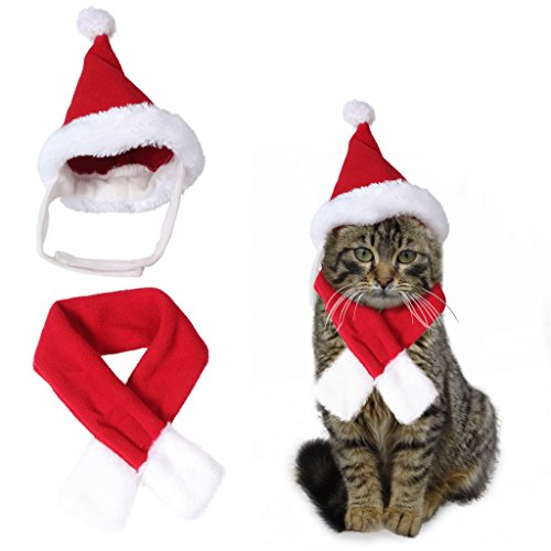 edealing Cute Santa Hat & Scarf Xmas Costume Suit Dress Up for Pet Dog Cats Fashion Christmas Accessory, Red (S-Fit Neck Size Within 11