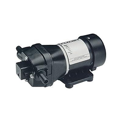 Flojet On-Demand Pump - 3/4in. Ports, 294 GPH, 12 Volt Motor, Model# 04300143A