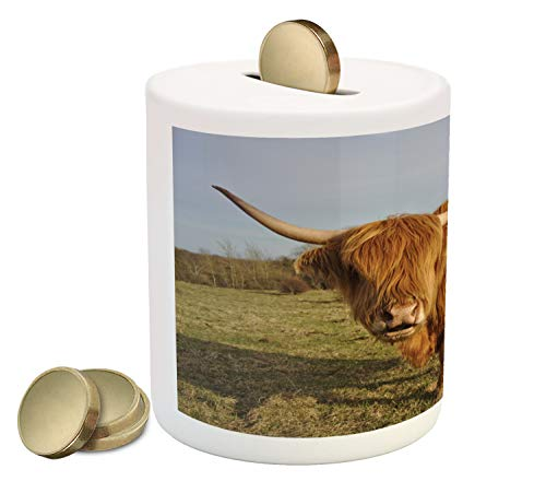 Lunarable Highland Cow Piggy Bank, Wide Angle Portrait Photo of Famous Hairy Scottish Farm Animal in Pasture, Printed Ceramic Coin Bank Money Box for Cash Saving, Multicolor