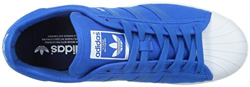Adidas Superstar Festival Pack B36082 Bluebird Blue / White