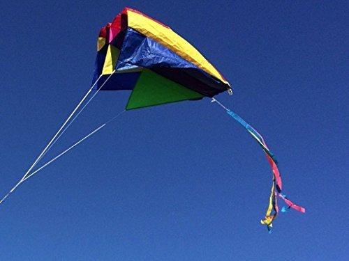 Caribbean Kite Company Parafoil 5 Kite - Multicolor ()