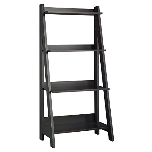 Bush Furniture MY72716-03 Alamosa Ladder Bookshelf, Classic Black