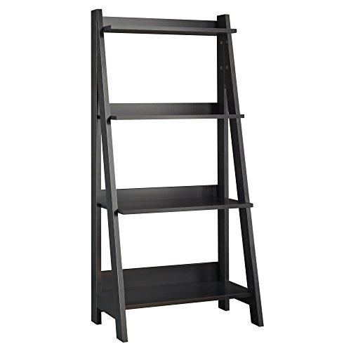Alamosa Ladder Bookshelf - Ladder Shelf Desk