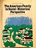 The American Family in Social-Historical Perspective, Michael Gordon, 031202312X