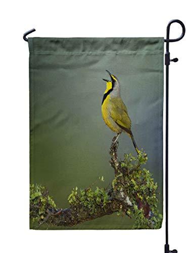 (HerysTa Garden Flag Stand, Decorative Yard Farmhouse Holiday Banner 12 x 18 inches Bird Calling South Africa Telophorus zeylonus Double-Sided Seasonal Garden)