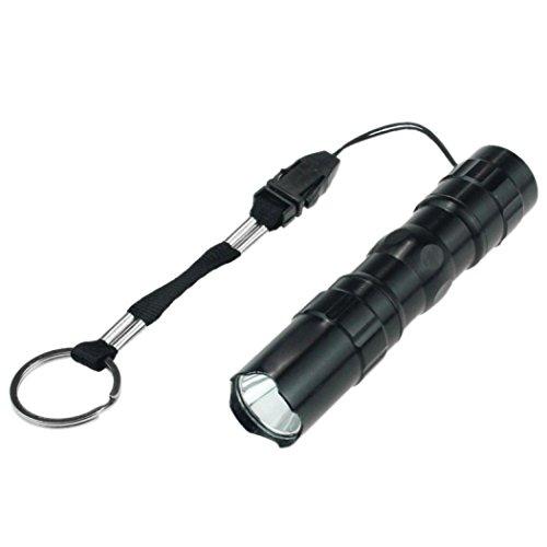 Focale Lampe Poche de Familizo LED Réglable Mini à étanche Noir Lampe tqCCHYwx8