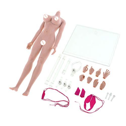 B Blesiya 1/6 Scale Female Seamless Body Large Bust Stainless Steel Figure Doll Gift Wheat Skin