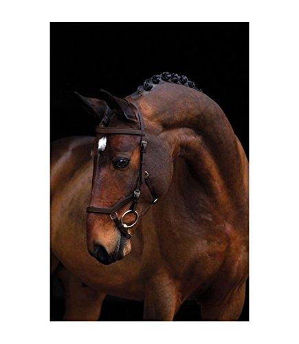 Horseware Ireland Rambo Micklem Comp Bridle/rein Dark Havana Standard Horse ()