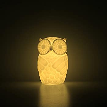 Delightful Mojocraft Serenity The Owl Battery Powered Decorative Claylike Night Light  With Timer, Warm White