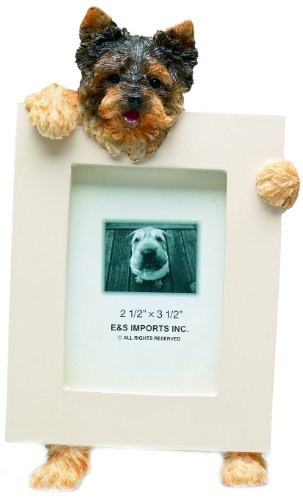 Yorkshire Terrier Puppycut 2.5'' x 3.5'' Photo Frame (Picture Yorkshire Dog Terrier)